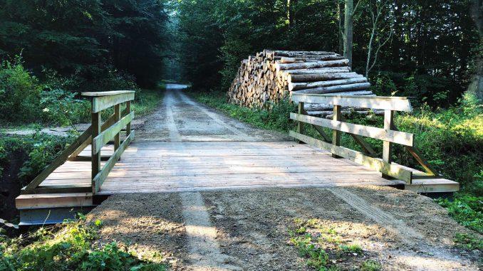 Adgang til skoven